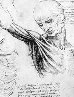 leonardo_da_vinci_anatomi